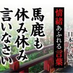【馬鹿も休み休み言いなさい】- 現代に使いたい日本人の感情、情緒あふれる言葉