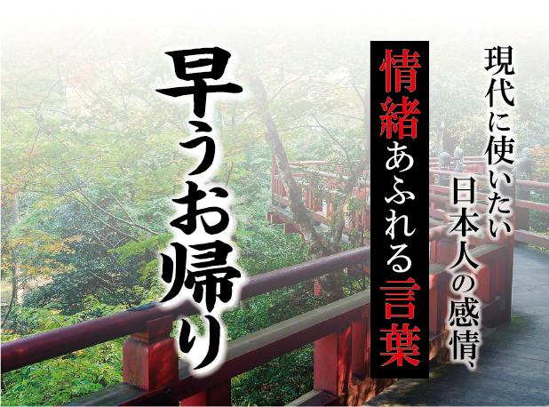 【早うお帰り】- 現代に使いたい日本人の感情、情緒あふれる言葉