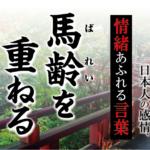 【馬齢を重ねる】- 現代に使いたい日本人の感情、情緒あふれる言葉