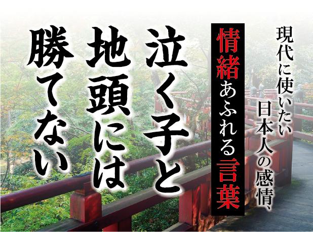 【泣く子と地頭には勝てない】- 現代に使いたい日本人の感情、情緒あふれる言葉