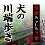 【犬の川端歩き】- 現代に使いたい日本人の感情、情緒あふれる言葉